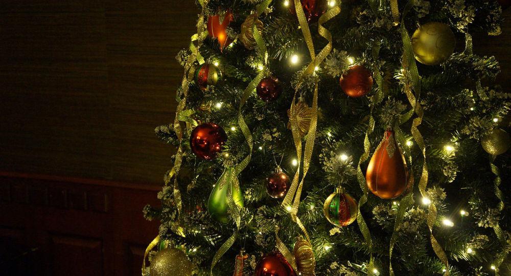 西班牙一酒店推出全球最贵圣诞树