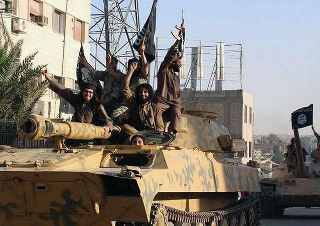 """""""伊斯兰国""""武装分子在叙利亚"""
