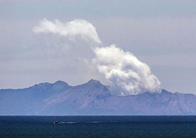 新西兰在火山爆发后要求美国提供120万平方米的皮肤