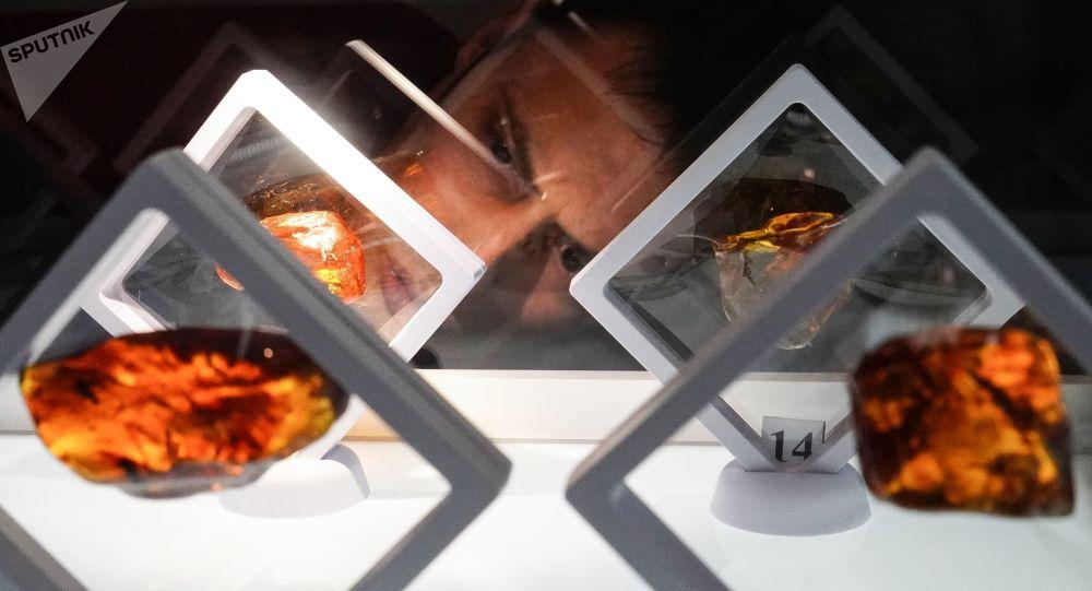 俄罗斯高级琥珀的首次拍卖活动将于下月在线上举行