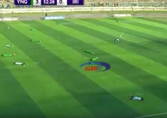 一群蜜蜂迫使球员在比赛中爬到草坪上