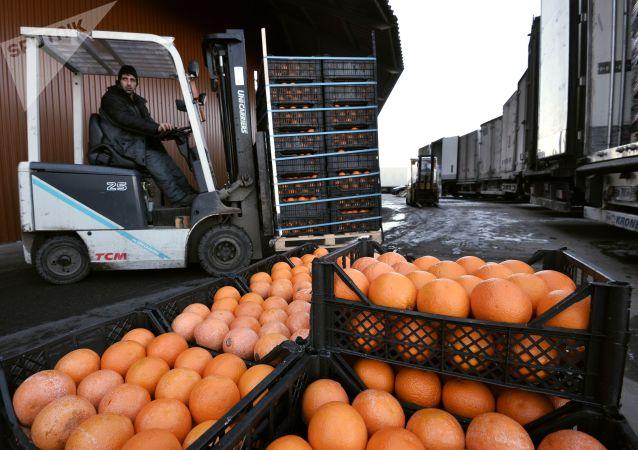 中国代表团赴俄磋商俄罗斯限制中国食品进口问题