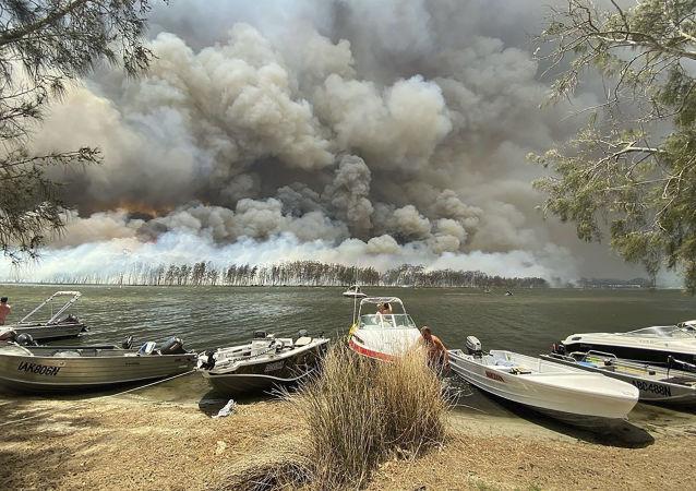 美国宇航局:澳大利亚林火烟雾已围绕地球周转一圈