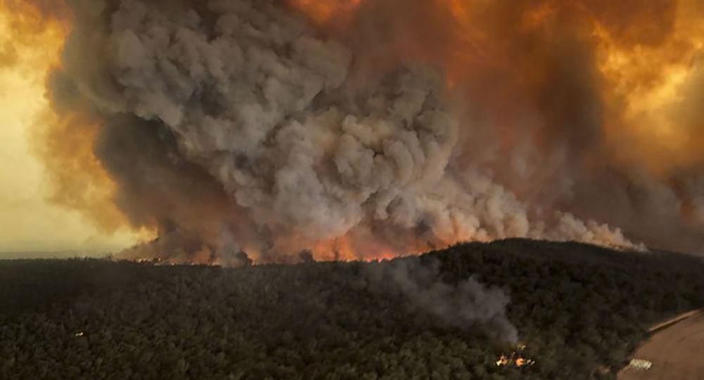 澳大利亚将向森林大火受灾者追加