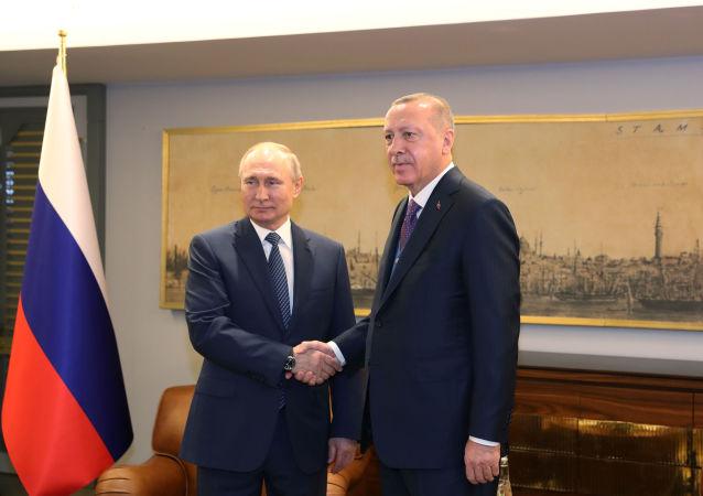 俄罗斯总统普京(左)和土耳其总统埃尔多安