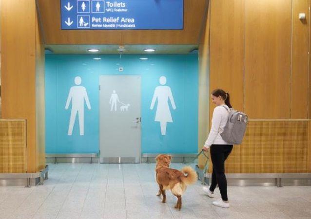 芬兰机场为宠物狗建造厕所
