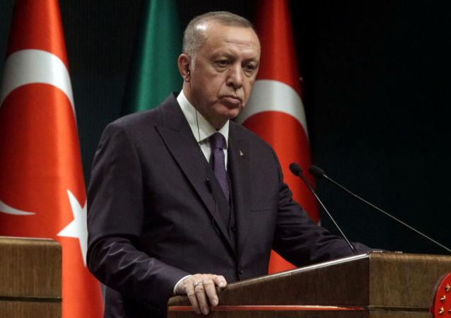 土总统:土耳其东部雪崩已导致33人死亡