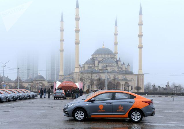 俄车臣行政长官呼吁抗疫人员和公务人员放弃休假