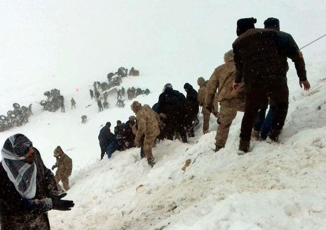 土耳其东部雪崩遇难者人数升至26人