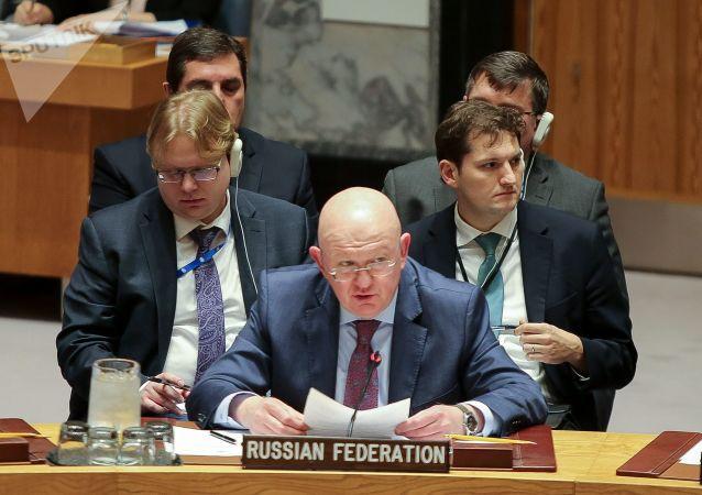 俄常驻联合国代表:下周将举行联合国安理会现场会议