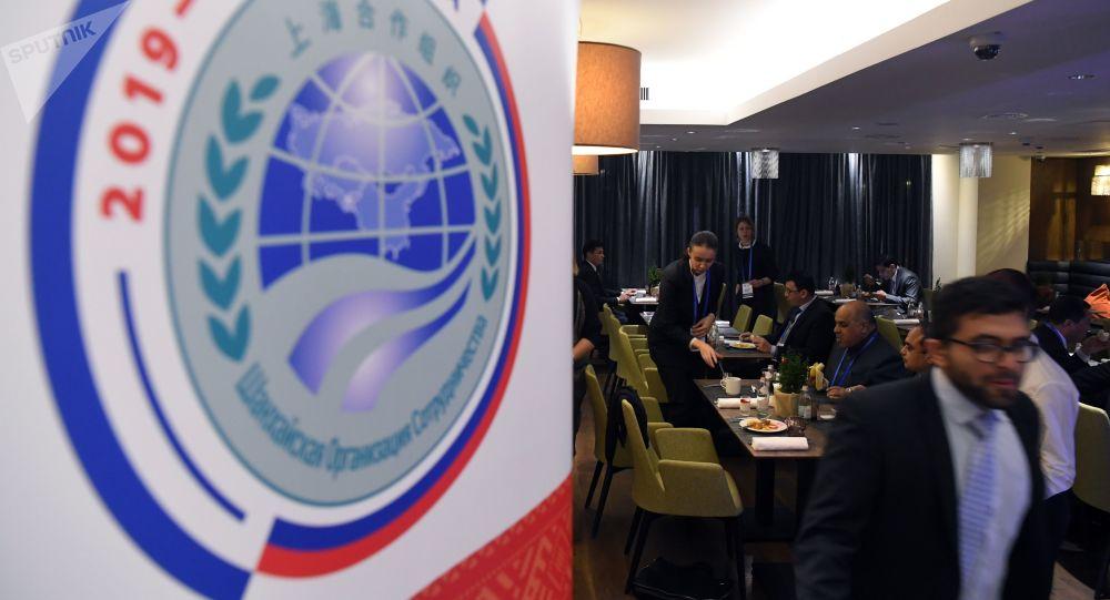 俄外交部:上合组织议长峰会将于今年举行