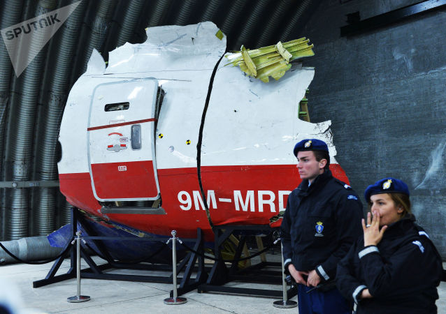"""马航MH17空难调查人员称有看到发射""""山毛榉""""导弹的目击证人"""