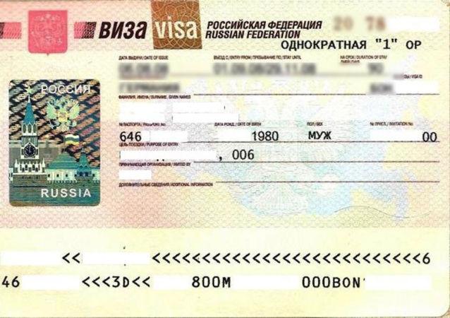 普京签署关于一次性电子签证的法令