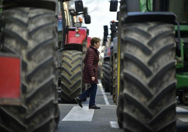 西班牙农民再次将拖拉机开上街举行抗议活动
