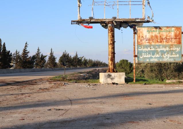 土耳其国防部:叙利亚伊德利卜停火基本得到遵守