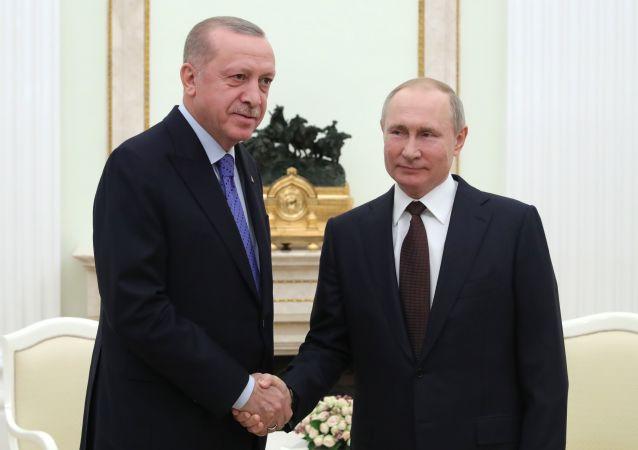 土耳其总统埃尔多安(左)与俄罗斯总统普京