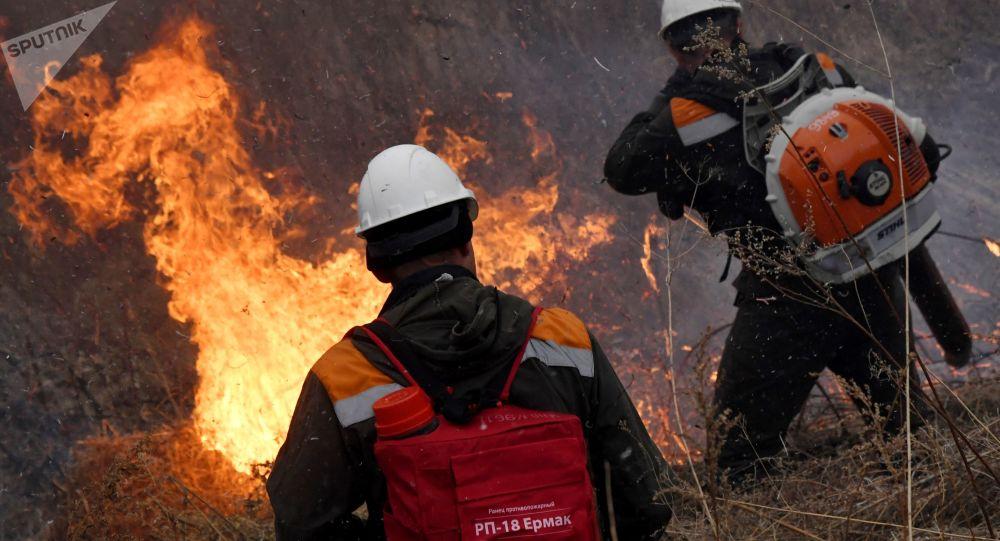 俄沃罗涅日州发生自然火灾 过火面积50公顷