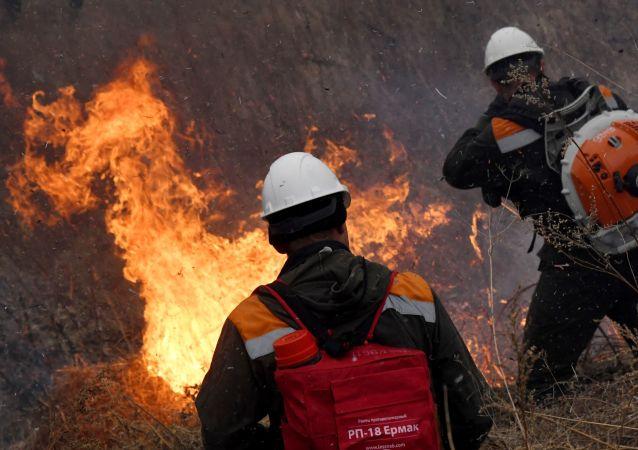 俄罗斯一天内扑灭约100处林火