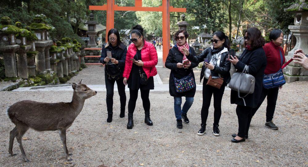 日本将为外国游客支付费用