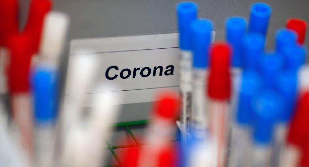 韩国科学家称冠状病毒基因中没有突变