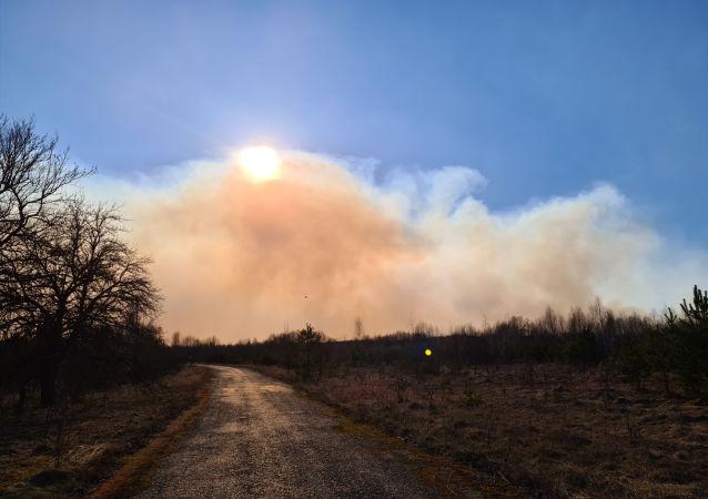 乌克兰紧急情况部:切尔诺贝利核电站禁区火灾面积增至35公顷