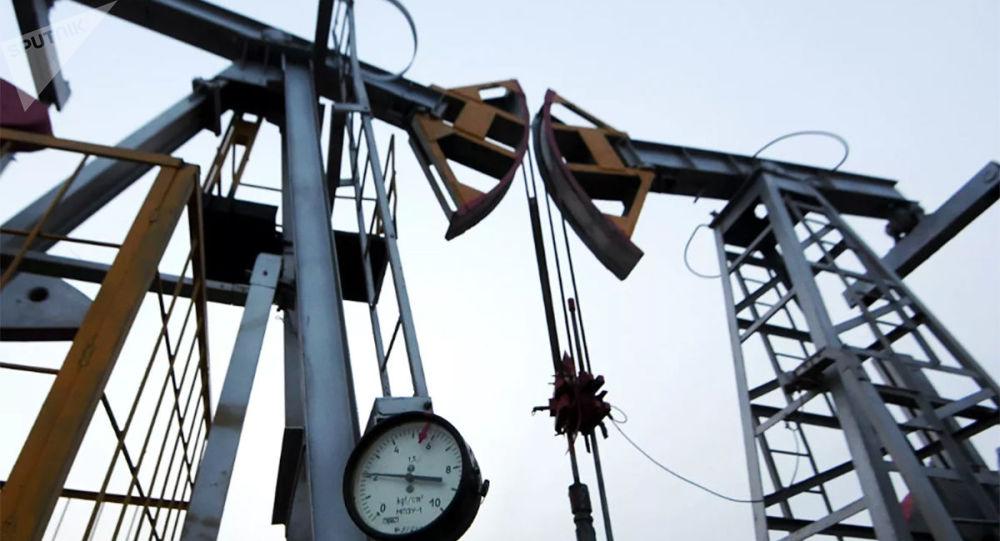 沙特阿拉伯人正在收购各大油气公司股票