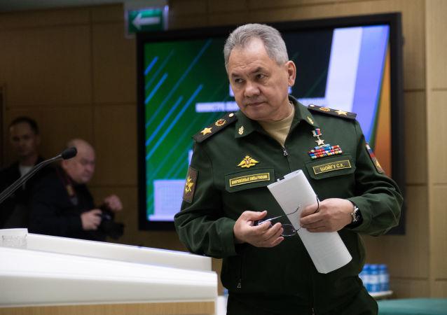 俄中防长讨论COVID-19疫情期间的互动问题