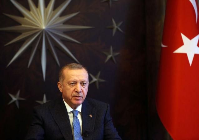 埃尔多安:土耳其将竭尽全力维护叙利亚的领土完整