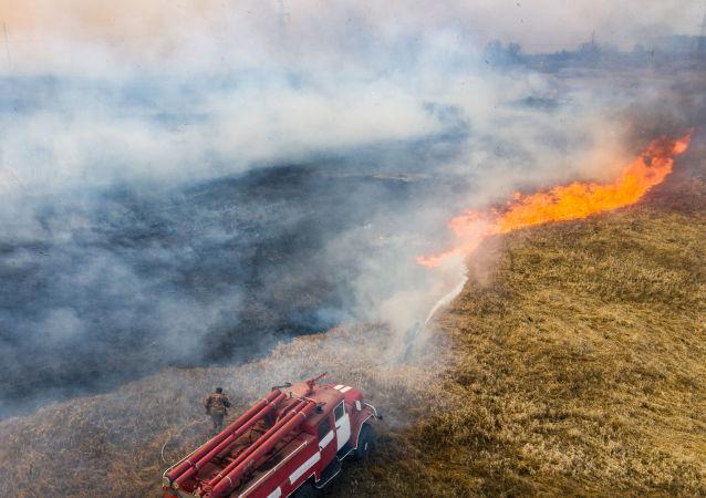 切尔诺贝利地区火灾已烧毁上万公顷森林
