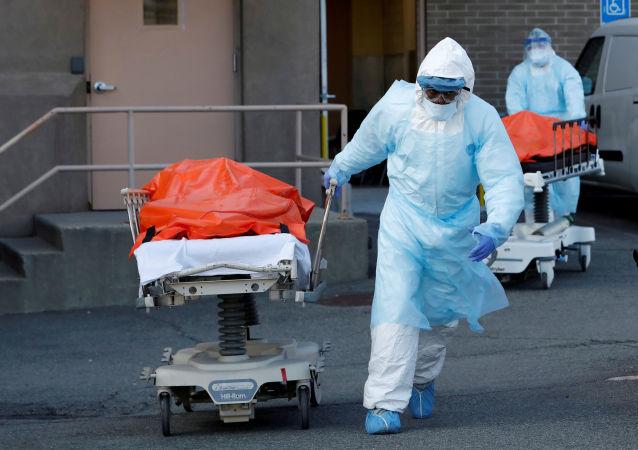 纽约州单日新增299例COVID-19死亡病例