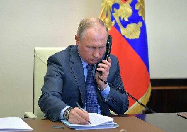 克宫:俄芬两国总统通话讨论抗疫问题
