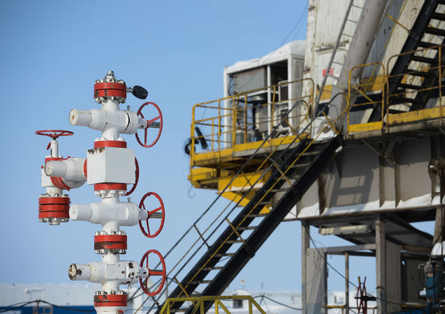 普京:俄罗斯和全球能源都受到冲击