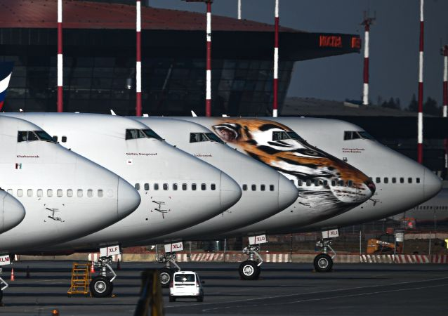俄交通部部长希望国际航班能在夏季开放