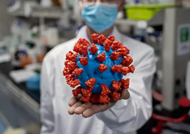 新型冠状病毒的模型