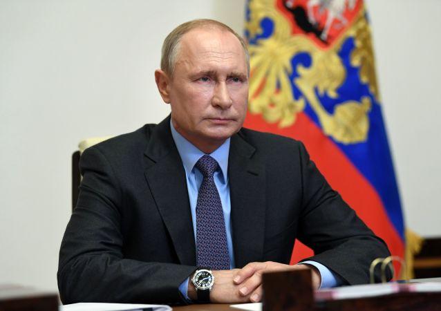 普京:企图改写历史与个别国家政局有关