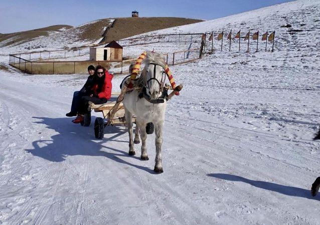 普京:国际旅游恢复到以前的水平需要时间