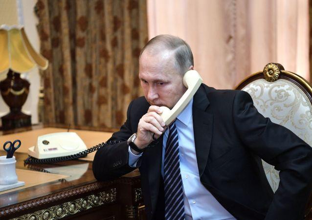 普京与卢卡申科讨论了有外部势力企图参与的白俄罗斯选举后局势,相信问题很快就会被解决