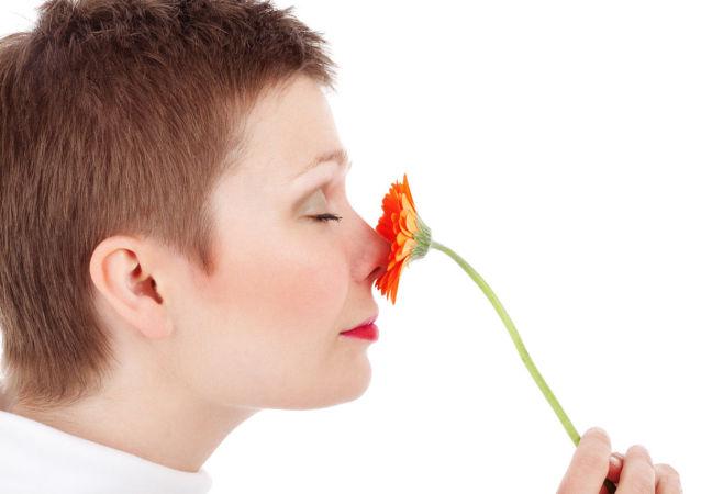 科学家指出冠状病毒后嗅觉恢复的日期