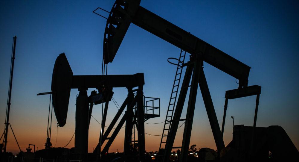 白俄外长:白俄开始从美国进口石油