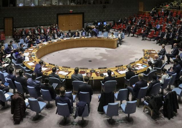 伊朗常驻联合国代表希望安理会忽略美国的制裁声明