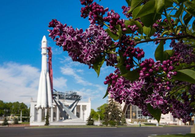 """全俄展览中心""""东方号""""运载火箭模型旁盛开的丁香"""