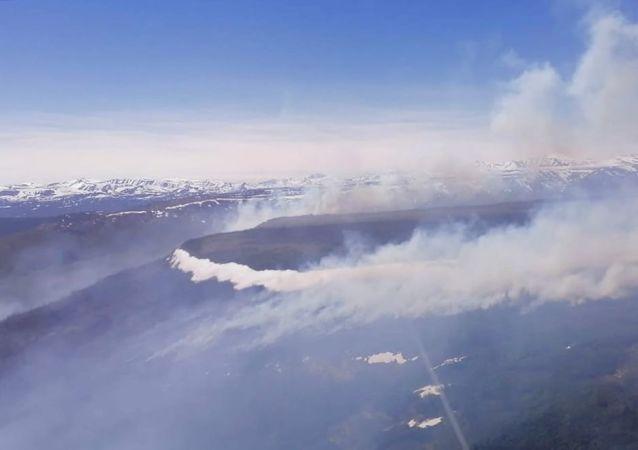 俄联邦林业署署长:俄正处于林火夏季高峰期之始