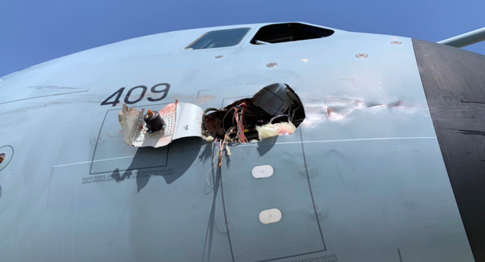 一只鸟在西班牙撞上北约飞机致机身受损