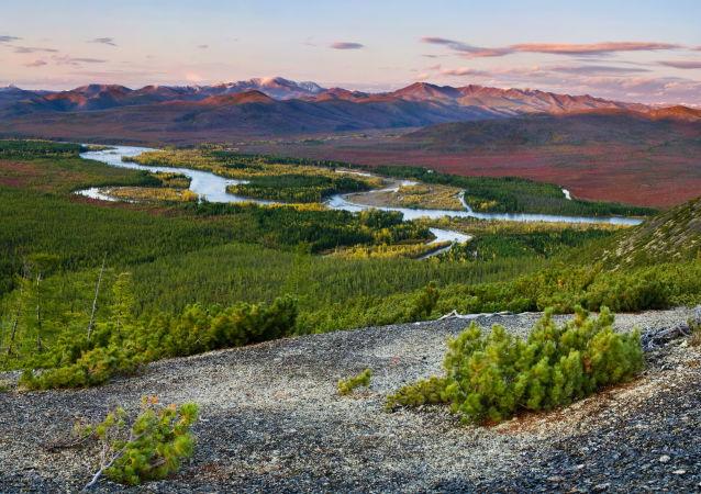 """俄总理签署在雅库特建立""""熊岛""""自然保护区的决议"""